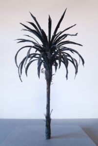 Black-Palm-Maquette-douglas-white